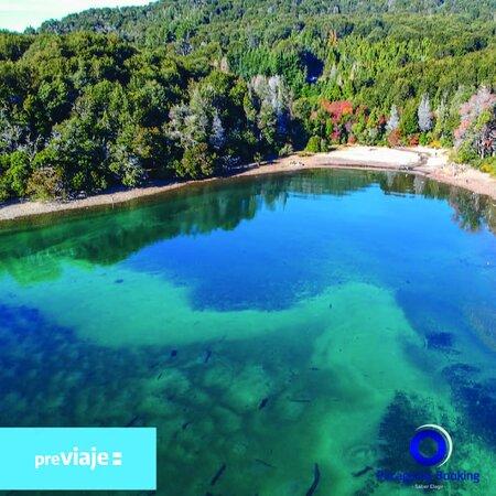 Caminar por el bosque y terminar en una playa paradisíaca es un clásico de Bariloche. Contactanos por whastapp y Consultá por nuestras excursiones