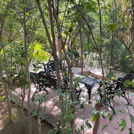 The tree house resort Chandwaji Jaipur