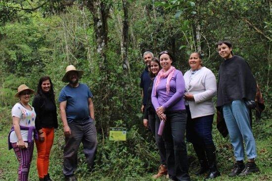 árvores identificadas na caminhada ecológica