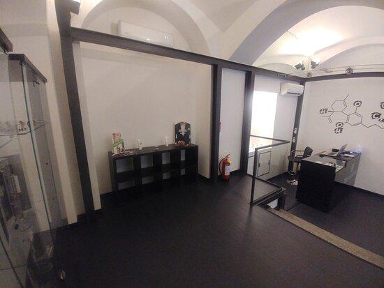CBD Collection Novara