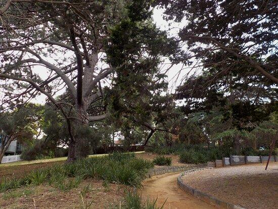 Balcome Road Park