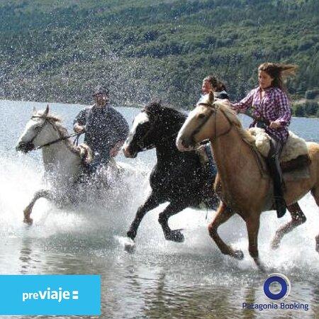 Disfrutá de una excursión absolutamente patagónica y conocé la flora y fauna a caballo. Contactanos por whatsapp para mas detalles esta excursion