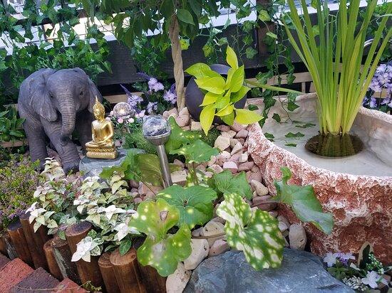 Thai Traditional Foot Care Vuran
