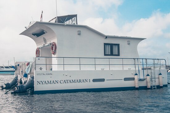 We provide catamaran boat rental in Labuan Bajo at competitive prices and the best!  For your sailing trip in the Komodo National Park  Contact us by Whatsapp +6281999565666