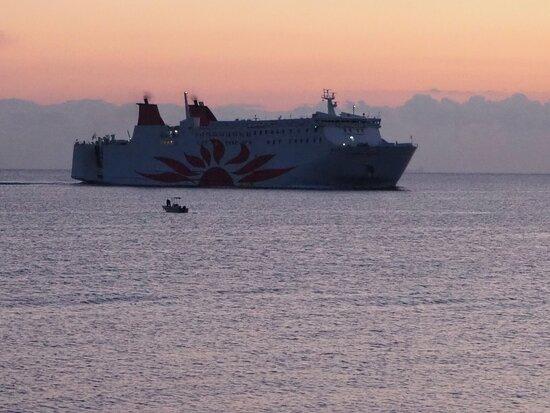 大阪湾から別府湾へ(サンフラワー号)平日