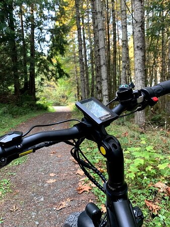 Getting outside is fun and easy with an e-bike!