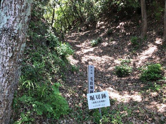 吉野山公園