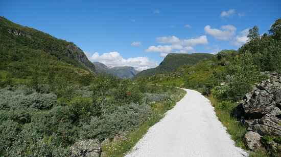 Myrdal, Norge: surroundings