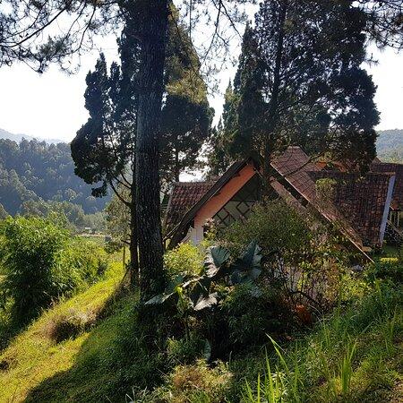 Ciwidey, Indonesia: Cottage (1 kamar)