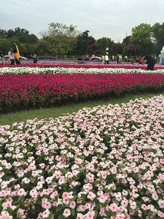 Suan Luang Rama 9 Park
