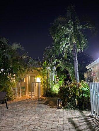 Hidden Gem - Tropical Oasis