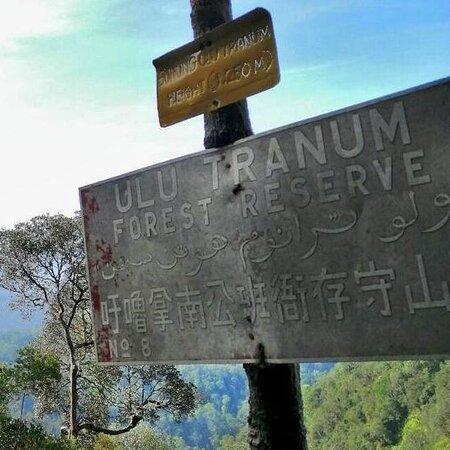 Gunung Ulu Tranum