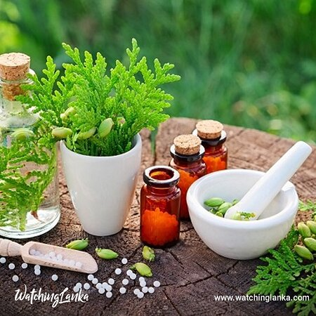 Sri Lanka: Visit More -  https://www.watchinglanka.com/use-of-herbal-medicine-against-covid-19/