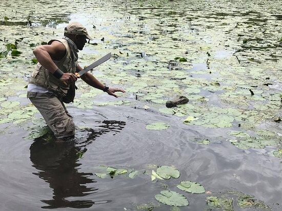Florida: What adventurers do
