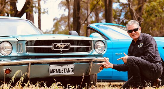Mr Mustang Hire