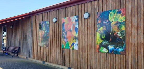 Millicent Visitor Information Centre  SA    artwork on outside of centre
