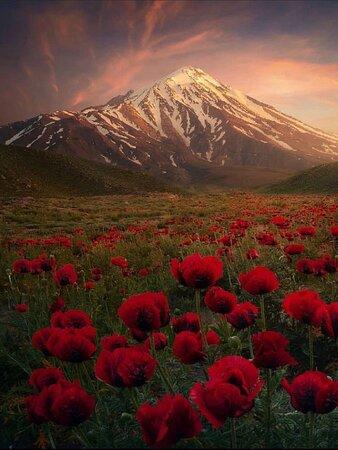 Amol, Iran: ❤️ Iran 🇮🇷 Damavand mountain 🌹 Rineh Village 😍