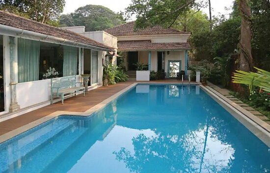 Your Luxury Pool Indulgence Awaits   For Bookings. Contact :- 8380810000 or visit www.villagoa.in  #VillaGoa #villasingoa #rentvilla #LuxuryVillasinGoa #luxuryhomes #micasasucasa #PrivatePoolVillas #Goa #Travel #TravelGoals #Traveller #traveltogoa #Travelwithfriends #travelwithfamily #exploregoa #pool #instatravel #luxurystay #weekendgetaway #weekendvibes #Vacay #staycation #holidays #beautifuldestinations #YOLO #airbnb #curlytales #lbbgoa #goodvibes
