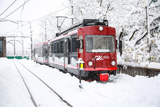 Treno Renon