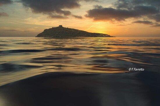 Lido Ipanema a Diamante - Noleggio Barche - Escursioni in barca