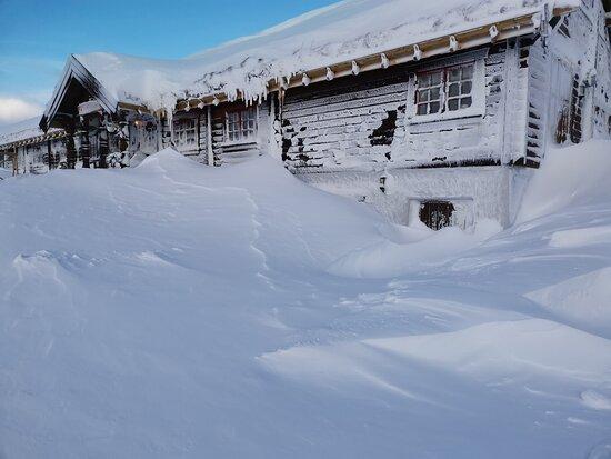 Pictures of Hakkesetstolen Mountain Lodge and Cabins - Hol Municipality Photos - Tripadvisor