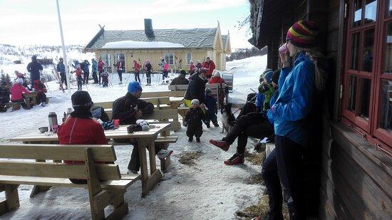 Tradisjonskost - Picture of Hakkesetstolen Mountain Lodge and Cabins, Hol Municipality - Tripadvisor