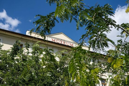 Damjanich Janos Museum