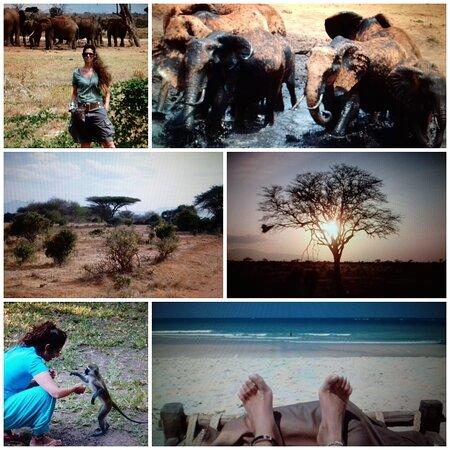Africa: Tanzania e  Kenya i miei luoghi del ❤ Tanzania and Kenya my favorite places ❤
