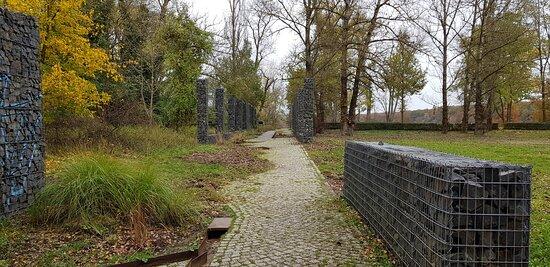 Deutschland, Frankfurt (Oder), Insel Ziegenwerder. Herbst 2020