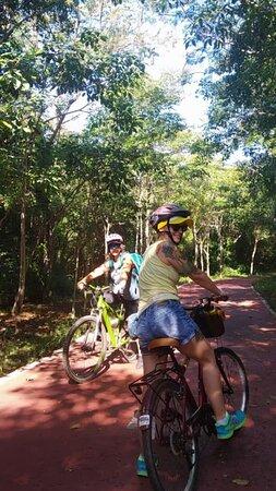 Ixtapa bike tour: biking under a canopy of trees is great when it's a hot day