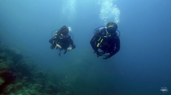 You don't need a certification to go diving, ask our team for more info!