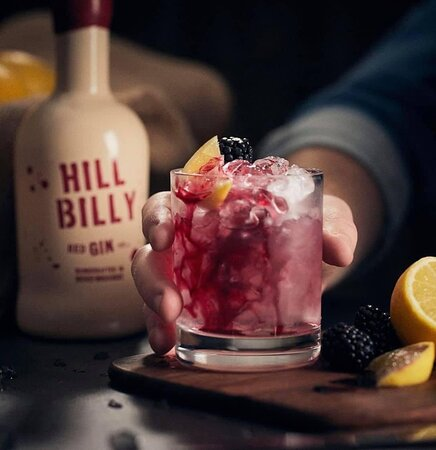 Amazing Blue Boy Burger, chili cheese fry's and jalapeño poppers washed down with Hill Billy Red Gin, heavenly.