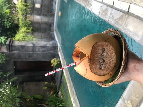 Nyuh Bali Villas Pool Pictures Reviews Tripadvisor