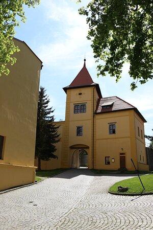 Zamek Polna