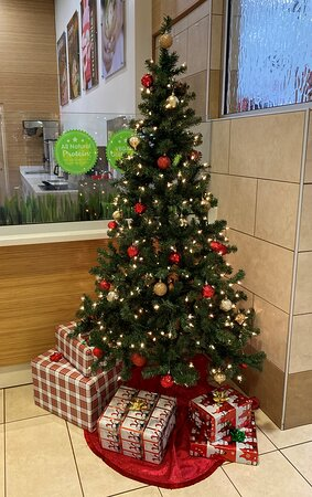 """Erie, PA: It's beginning to feel a lot like Christmas. Come visit and enjoy a """"Fresh"""" smoothie, wrap, panini, or salad. Good food from """"FRESH"""" ingredients!  You can also order ahead for pickup or delivery."""