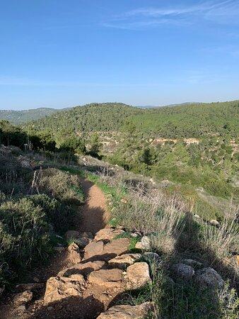 A few final photos of the trail