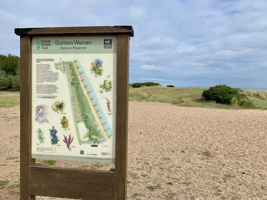 Gunton Warren nature reserve