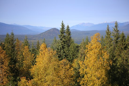 Wells Gray Provincal Park, Καναδάς: View from looking Tower