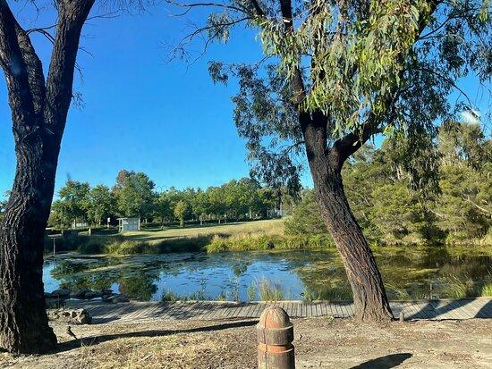 Beaconsfield Wetlands