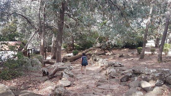 Cerro Centinela, Tandil
