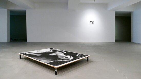 Carlos Carvalho Arte Contemporânea