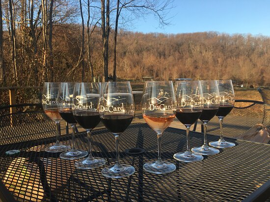 Etlan, VA: Seated at table enjoying red tasting.