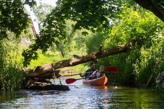 Gulbene, Lettonie : Kayaking in Pededze river.