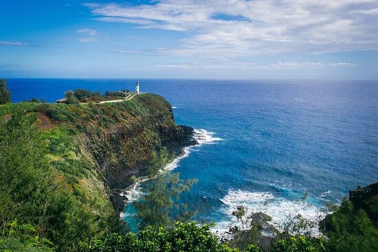 Private 6 hour Tour of Kauai North Shore with Local Guide