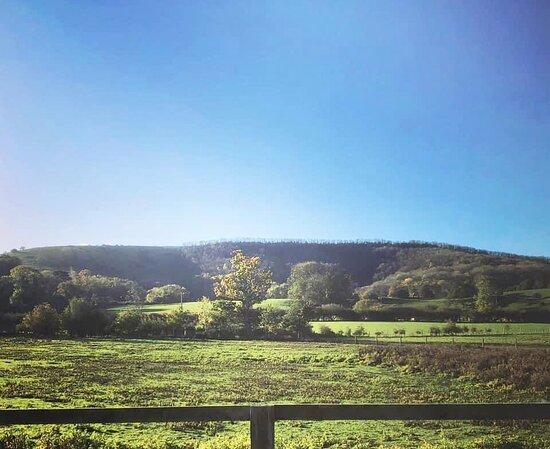 Storrington, UK: Our view