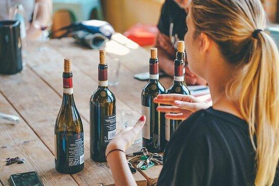 Winery Visit and Amarone Wine-tasting