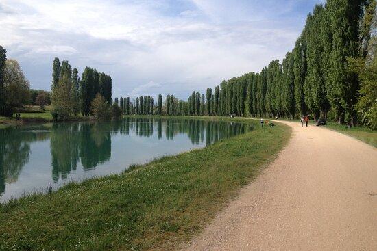 Verona Experience