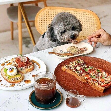 Pet Food at Thursday's Child Cre: @supercutiegenie on Instagram