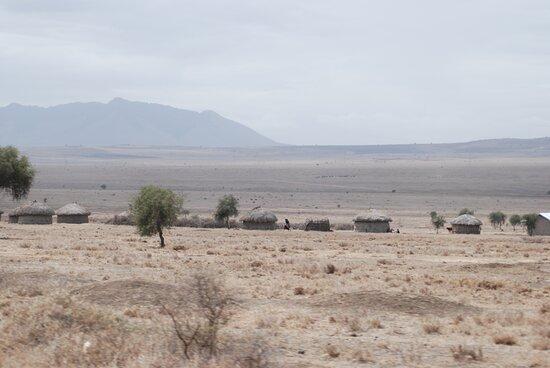 טנזניה: Souvenirs de mes Voyages --- Tanzanie -- Villages traditionnels Massai à la frontière Kenyane 20.12.17