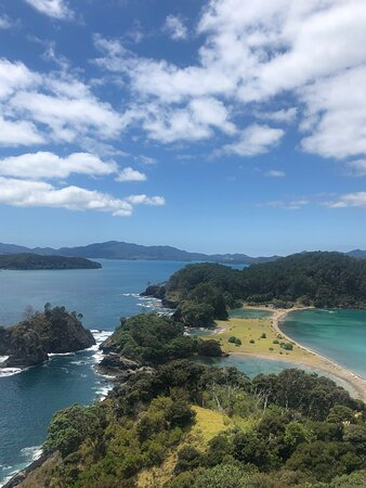 Bay of Islands Cruise & Island Tour - Snorkel, Hike, Swim, Paddleboard, Wildlife: spectacular view from the hike
